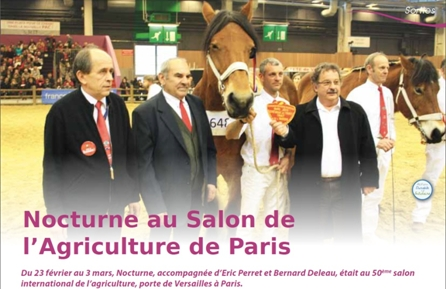 jument de trait Merveille au salon de l'agiculture
